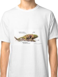 Jackson's Chameleon Anatomy with Labels Classic T-Shirt