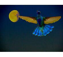 Hummingbird Moon Photographic Print