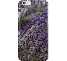 wisteria blooming iPhone Case/Skin