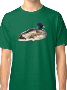 Mallard Duck Classic T-Shirt