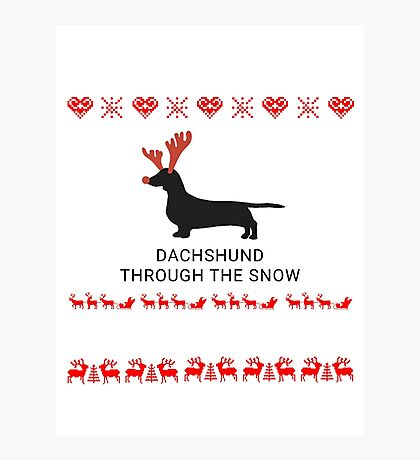 dachshund in snow Photographic Print