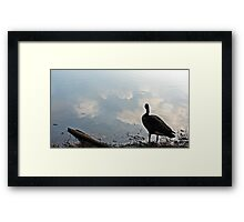Overlooking the Water Framed Print