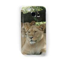 Restful Lioness Samsung Galaxy Case/Skin