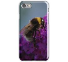 Bee on a Buddleia Flower iPhone Case/Skin