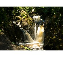 Forest Waterfalls Photographic Print