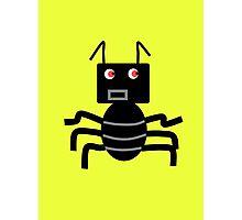 Someone Call The Exterminator! Photographic Print