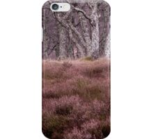 Looking up at the Silver Birches iPhone Case/Skin