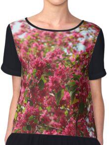 Spring Blossom Chiffon Top