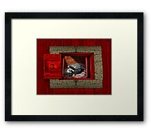 Mao's Red Room Sonata  Framed Print