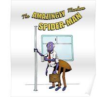 Mundane Spider-man Poster