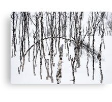 Norwegian wood Canvas Print