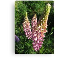 Summer Spires Canvas Print