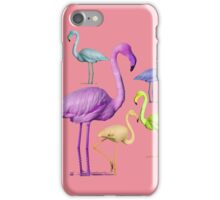 flamingo party - pink iPhone Case/Skin