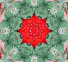 Sturt's Desert Pea - Abstract Sticker