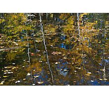 Autumn Reflection Photographic Print