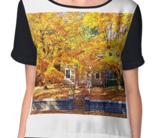 Golden Days of Autumn Women's Chiffon Top
