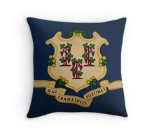 Connecticut State Flag  Throw Pillow