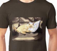 Sleeping Sealpoint Unisex T-Shirt