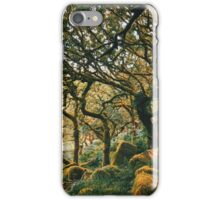 Ancient Forest iPhone Case/Skin