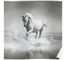 Horse - Oil Paint Art (Square) Poster