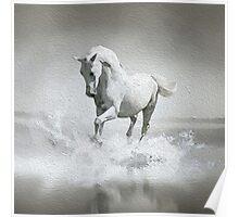 Horse - Oil Paint Art (Square) Poster