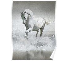 Horse - Oil Paint Art Poster