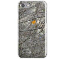 Bird in orange iPhone Case/Skin