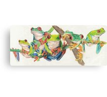 Red-Eyed Tree Frogs Canvas Print