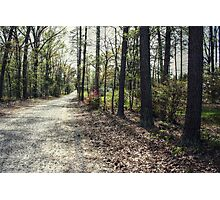 Gravel Country Road Photographic Print