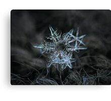 Snowflake of 19 March 2013 Canvas Print