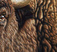 Tatanka - American Buffalo Sticker