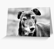 Did Someone Mention Food? Greeting Card
