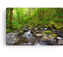 Afternoon by the Creek Canvas Print