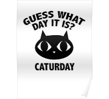 Guess What Day It Is? Caturday Poster