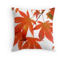 Orange Leaves of Japanese Maple Tree Throw Pillow
