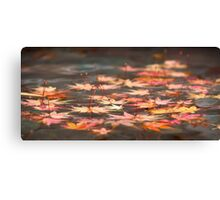 Floating Leaves of Fall Canvas Print