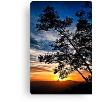 The Sunset Tree (Limited Edition - 100 available) Canvas Print