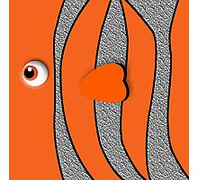 Orange ornamental fish cartoons Photographic Print