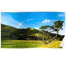 Rural Wairarapa Poster