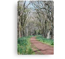 Wandering Path Canvas Print