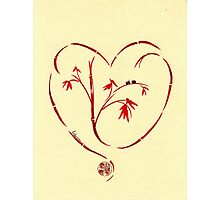 I Love You Too - Bamboo Heart & Ladybug Love Painting Photographic Print