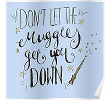 Don't let the muggles get you down! Poster