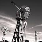 """Windmills Noir""  by waddleudo"