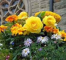 Asters and Ranunculus - St. Nicholas' Church, Durham by kathrynsgallery