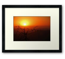 Dead And Dying Framed Print