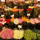 Flowers by Murray Breingan