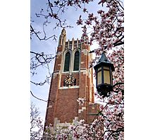 Beaumont Tower through the Magnolias, Michigan State University Photographic Print