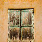 A window shutters by Murray Breingan