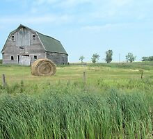 Old Barn on the Prairie by Kathleen Brant