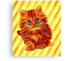 Furry Kitten Canvas Print